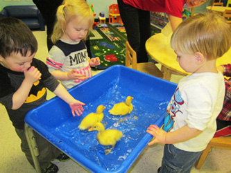 Eldersburg-Two-year-olds-spring-experience-Celebree-Learning-Centers-1