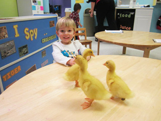 Eldersburg-Two-year-olds-spring-experience-Celebree-Learning-Centers-2