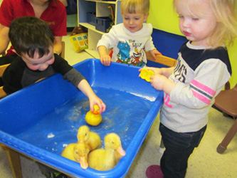 Eldersburg-Two-year-olds-spring-experience-Celebree-Learning-Centers-3