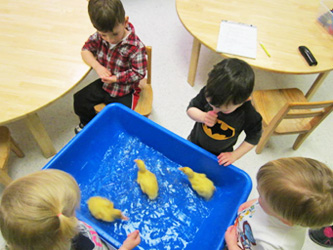 Eldersburg-Two-year-olds-spring-experience-Celebree-Learning-Centers-4